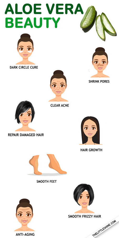 10 Best beauty tips using aloe vera