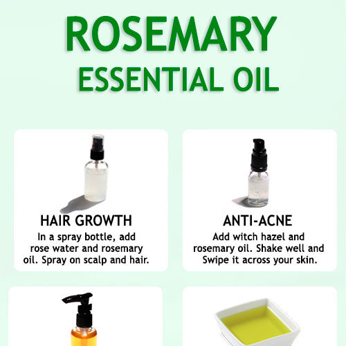 ROSEMARY ESSENTIAL OIL - BENEFITS AND USES