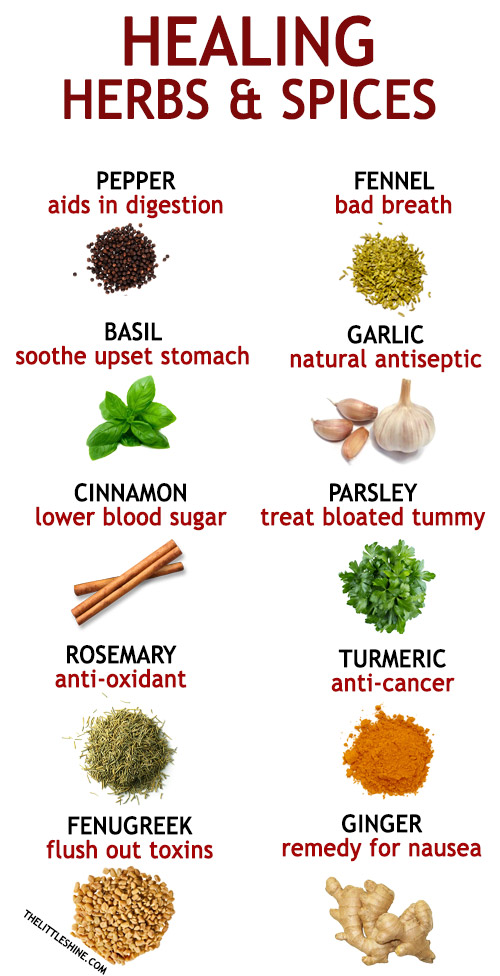 10 HEALING HERBS AND SPICES