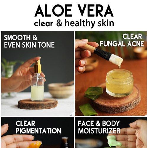Best ways to use aloe vera for clear healthy and glowing skin