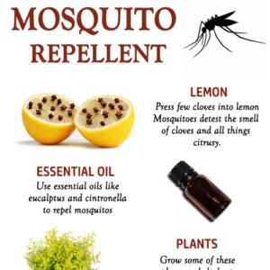 MOSQUITO REPELLENT NATURAL REMEDIES