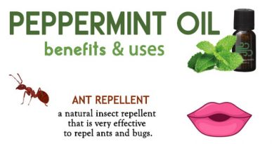 Peppermint Oil Benefits and Uses