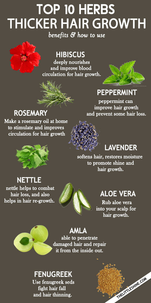 Top 10 Amazing Herbs For Faster and thicker Hair Growth