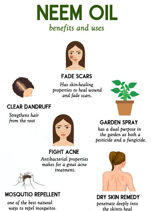 NEEM OIL benefits and uses