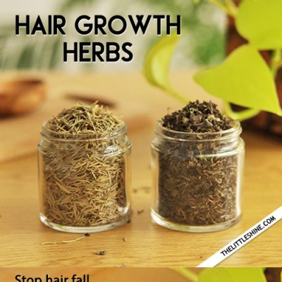 2 BEST HERBS to stop hair fall and treat thinning hair