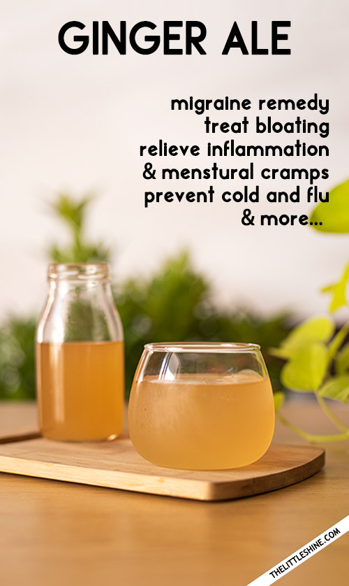 GINGER ALE RECIPE AND BENEFITS