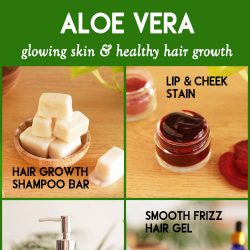 Aloe vera products you can make at home for healthy skin and hair