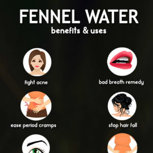 Fennel Water: Recipe And Benefits