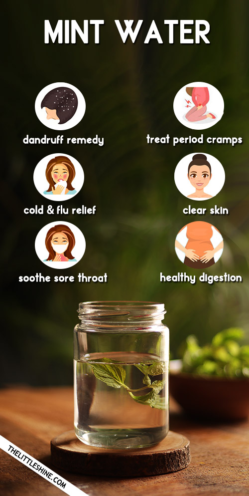 Mint Water: Recipe And Benefits