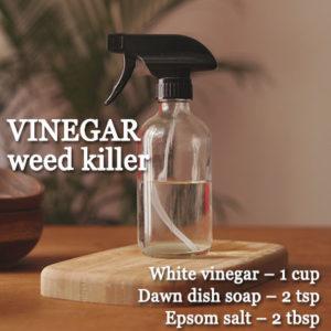 BEST WAYS TO GET RID OF WEED IN YOUR GARDEN
