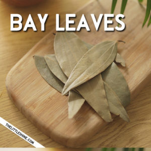 BAY LEAVES BENEFITS, REMEDIES AND USES
