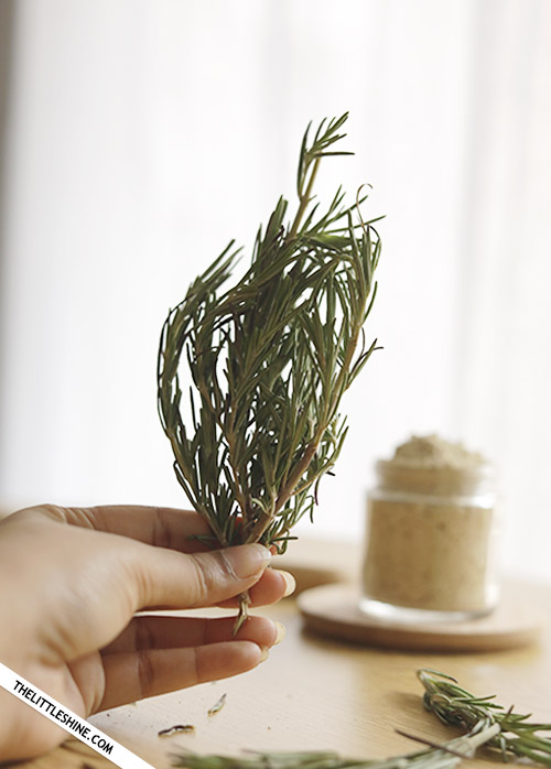 ROSEMARY - HEALTH AND BEAUTY BENEFITS AND USES