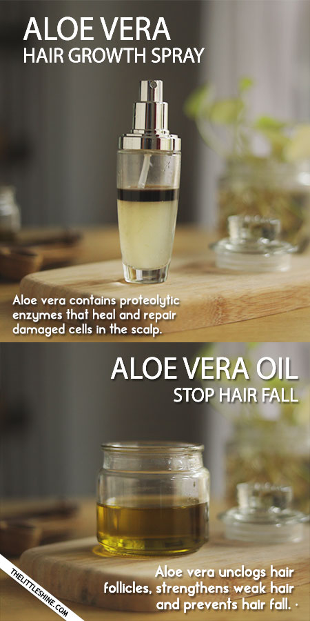 ALOE VERA FOR HEALTHY HAIR AND SCALP WITH BENEFITS
