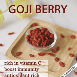 GOJI BERRY – BENEFITS AND USES
