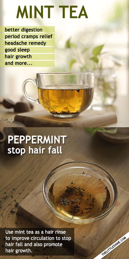 MINT TEA BENEFITS AND RECIPE